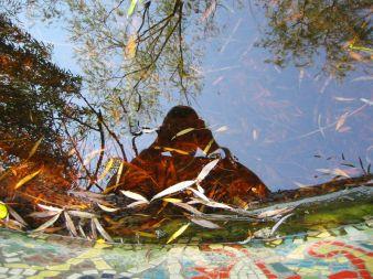 Reflection loving introvert (2002-08-072). Vyacheslav Argenberg on Flikr. https://www.flickr.com/photos/argenberg/82909244